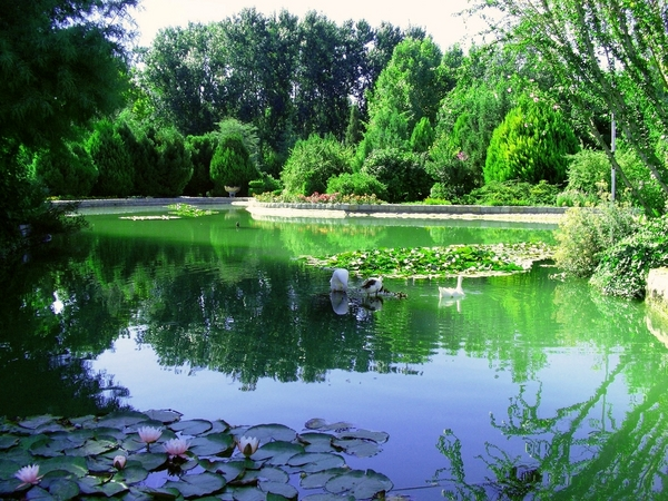 A beautiful Park in Isfahan