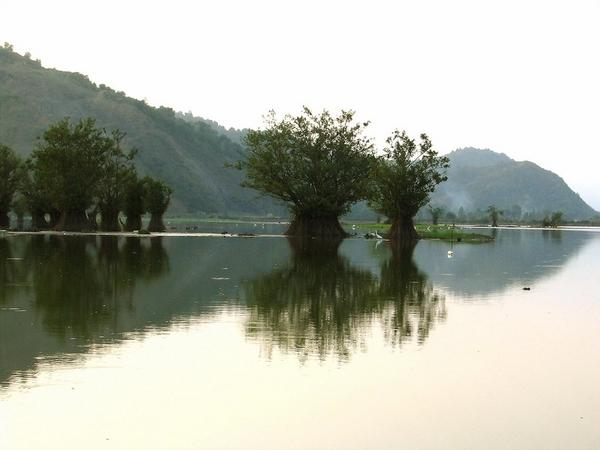 A serene Lake in Guilan, Northern Iran